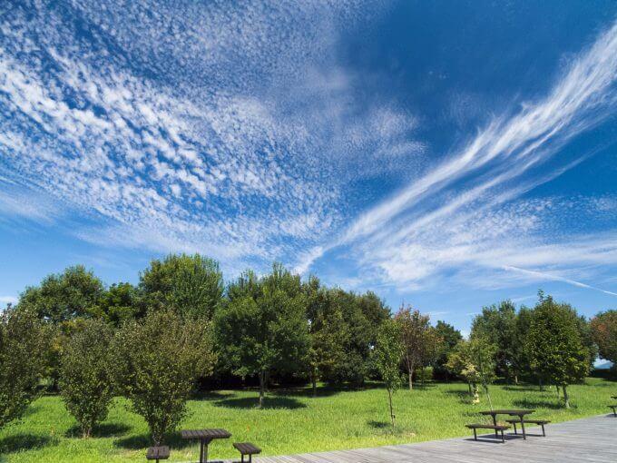 青空と公園